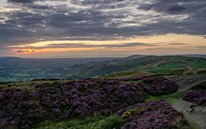 Bilder Vereinigtes Königreich Landschaftsfotografie Abend Himmel Grünland Hügel Wolke Wales North Wales