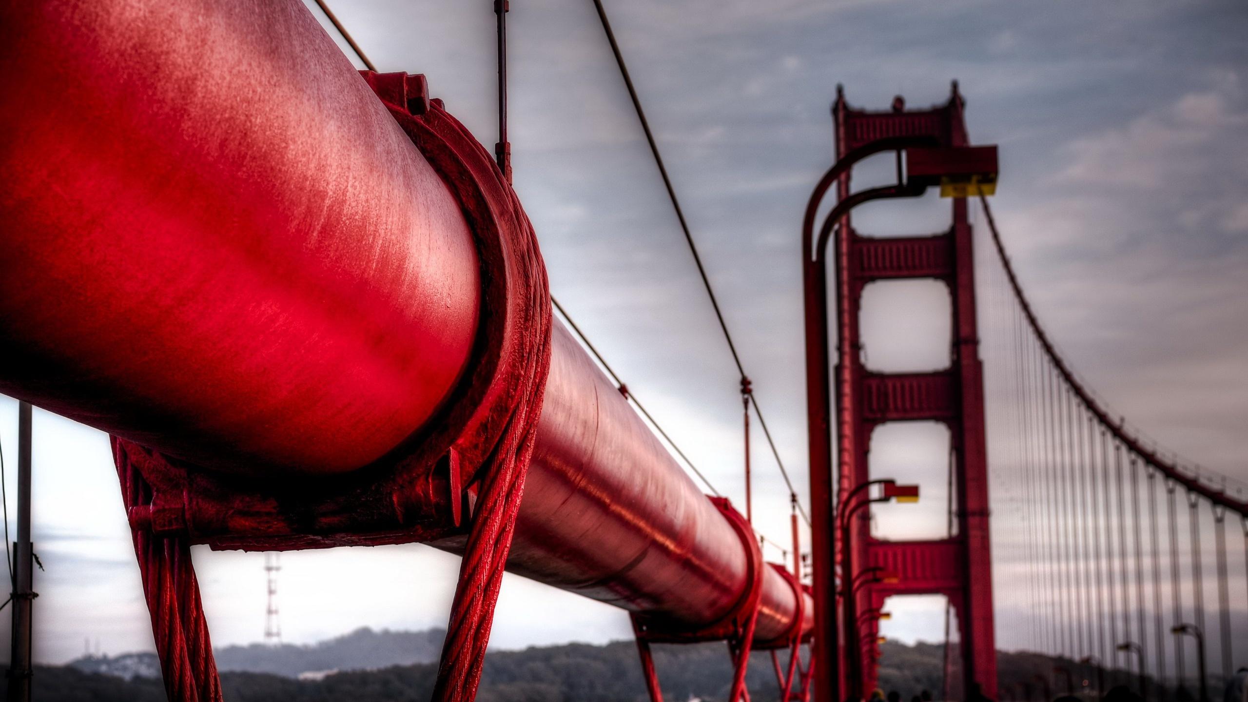 Fonds Decran 2560x1440 En Gros Plan Macro Ponts Rouge