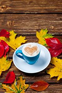 Images Coffee Cappuccino Heart Cup Saucer Foliage Maple Food