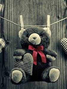 Fotos Valentinstag Teddybär Herz Schleife
