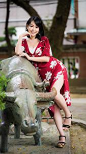Hintergrundbilder Asiaten Posiert Bein Kleid Lächeln Brünette Starren junge frau