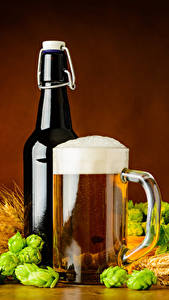 Fotos Getränke Bier Echter Hopfen Becher Flasche Schaum Ähren Lebensmittel