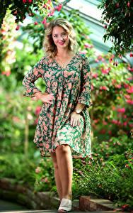 Hintergrundbilder Kleid Lächeln Blick Selina junge frau