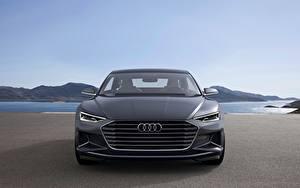 Fotos Audi Graue Metallisch Coupe Vorne 2014, Prologue, Concept Autos