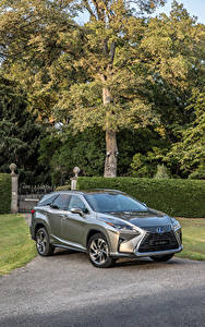 Fotos Lexus Grau Metallisch 2018 RX 450hL Autos