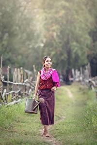 Hintergrundbilder Asiatisches Zaun Weg Gras Mädchens