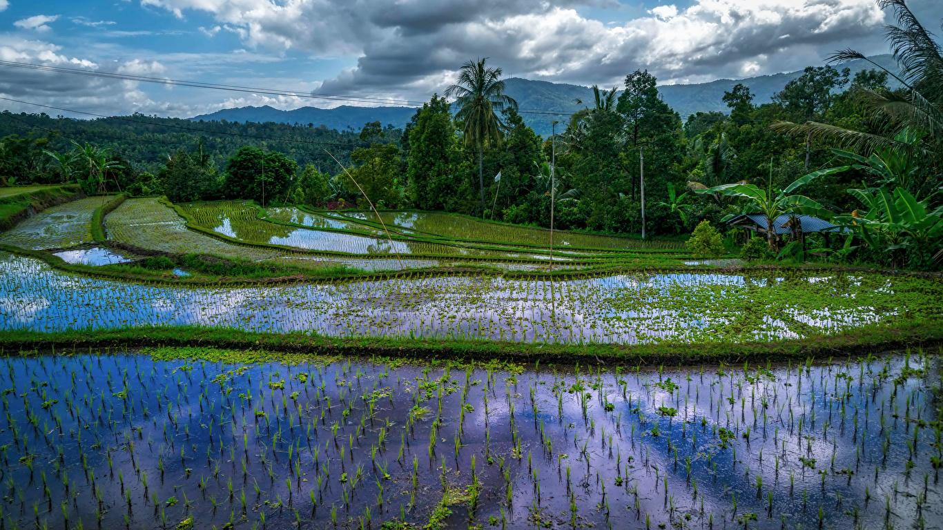 Fondos De Pantalla 1366x768 Indonesia Zona Intertropical