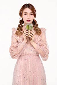 Bilder Kakteen Asiaten Weißer hintergrund Kleid Hand Zopf Braune Haare Starren junge frau