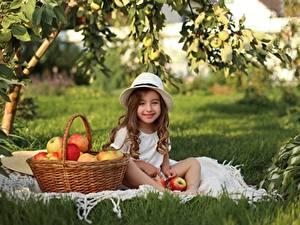 Fotos Äpfel Kleine Mädchen Lächeln Sitzend Weidenkorb Der Hut Gras kind