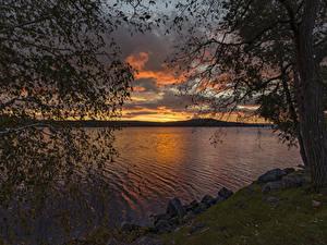 Fotos USA Flusse Sonnenaufgänge und Sonnenuntergänge Steine Bäume Ast Meredith Bay