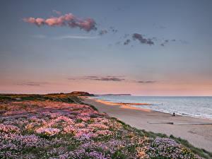 Fotos England Küste Morgendämmerung und Sonnenuntergang Strände Southbourne Beach