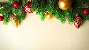 Hintergrundbilder Neujahr Farbigen hintergrund Ast Kugeln