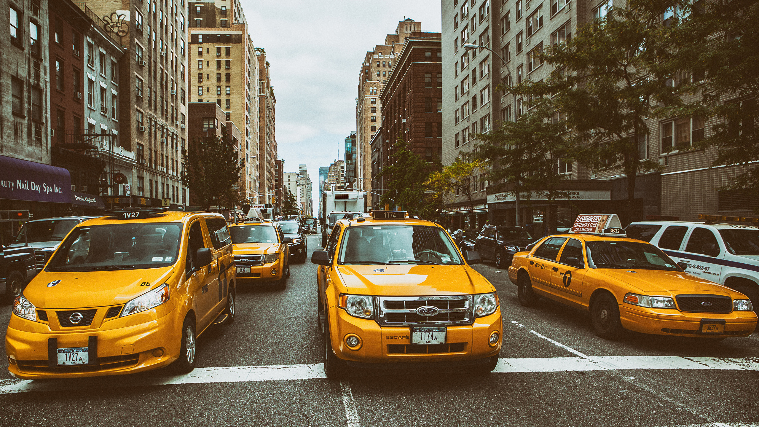 Fonds D Ecran 2560x1440 Taxi Voitures Usa New York