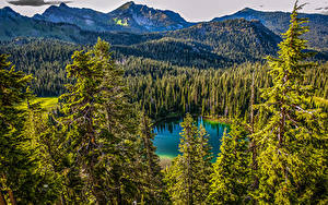 Hintergrundbilder Kanada Park See Gebirge Wälder Landschaftsfotografie Mt. Rainier National Park