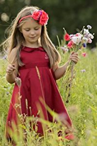 Bilder Sträuße Kleid Kleine Mädchen Kinder