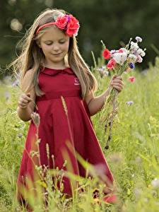 Picture Bouquets Dress Little girls child