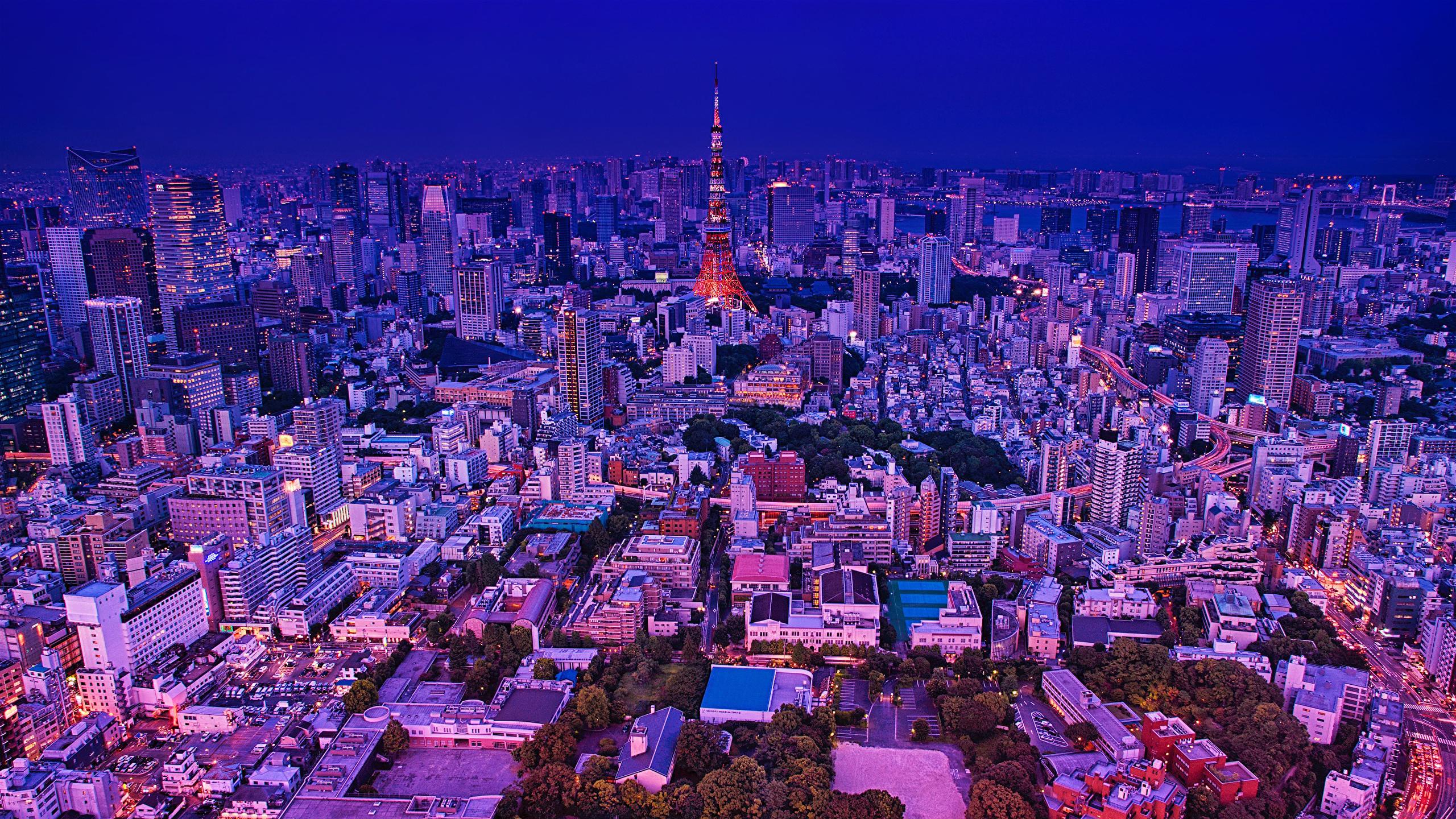 壁紙 2560x1440 日本 東京都 住宅 夕 メガロポリス 都市 ダウンロード 写真
