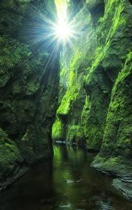 Fotos Schottland Laubmoose Felsen Höhlen Bach Lichtstrahl Devil's Glen Finnich Gorge