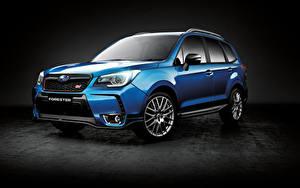 Fotos Subaru Blau Metallisch Forester