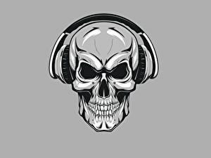Fotos Cranium Kopfhörer Grauer Hintergrund