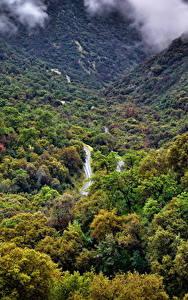 Hintergrundbilder USA Park Wälder Kalifornien Sequoia National Park Natur