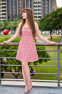 Fotos Asiaten Braunhaarige Kleid Posiert junge Frauen