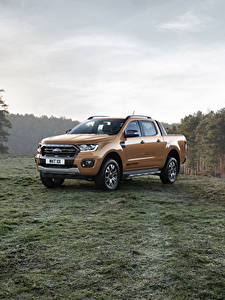 Fotos Ford Metallisch Pick-up 2019 Ranger Wildtrak Autos