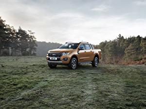 Fotos Ford Metallisch Pick-up 2019 Ranger Wildtrak auto