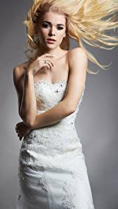 Bilder Grauer Hintergrund Blondine Brautpaar Kleid Hand Mädchens