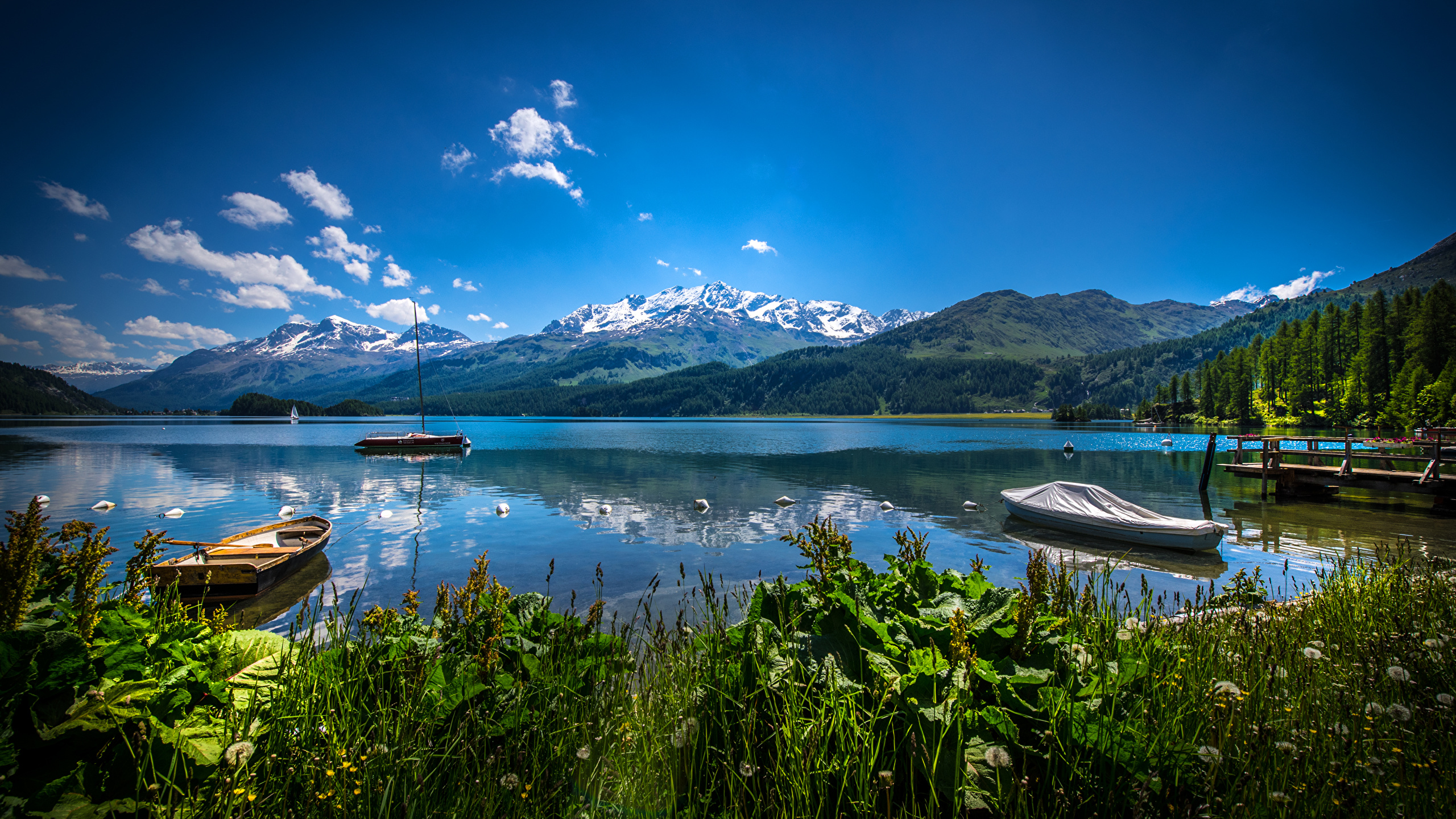Wallpaper Switzerland Lake Sils Nature Mountain Scenery 2560x1440
