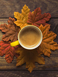 Picture Autumn Coffee Boards Foliage Cup