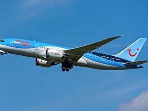Hintergrundbilder Boeing Flugzeuge Verkehrsflugzeug Seitlich 787-8, TUI, Dreamliner Luftfahrt