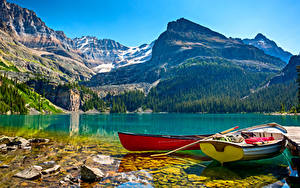 Bilder Kanada Park Gebirge See Boot Steine Landschaftsfotografie Yoho National Park Lake O`Hara