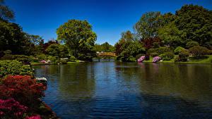 Hintergrundbilder USA Park Flusse Brücken Strauch Bäume Missouri Botanical Garden Natur