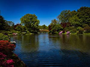 Hintergrundbilder Vereinigte Staaten Park Flusse Brücken Strauch Bäume Missouri Botanical Garden Natur
