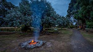 Image Australia Park Bonfire Trees Trail Smoke Halls Haven Resort Nature