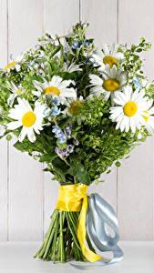 Bilder Sträuße Kamillen Bretter Band Blumen
