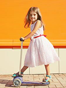 Fotos Kleine Mädchen Kleid Blick Kinder