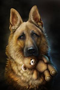 Fotos Teddy Gezeichnet Schwarzer Hintergrund Shepherd Starren ein Tier