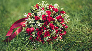 Pictures Bouquet Roses Flower Lilies Of The Valley Grass