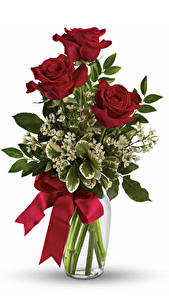 Hintergrundbilder Sträuße Rosen Vase Bordeauxrot Schleife Weißer hintergrund