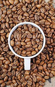 Bilder Kaffee Getreide Tasse