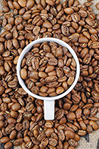 Bilder Kaffee Getreide Tasse Lebensmittel