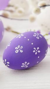 Fotos Ostern Ei