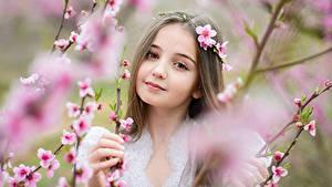 Hintergrundbilder Kleine Mädchen Starren Ast Gesicht Süß kind