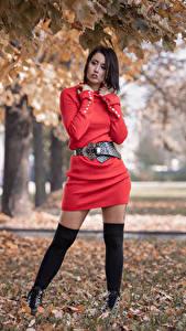 Bilder Pose Kleid Bein Blattwerk Stefania junge Frauen