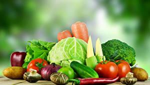 Bilder Gemüse Kohl Tomaten Gurke Pilze