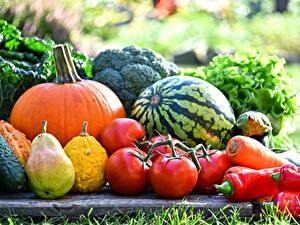 Images Vegetables Pears Watermelons Tomatoes Pumpkin Pepper Food