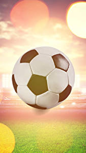 Hintergrundbilder Fußball Ball Rasen Sport