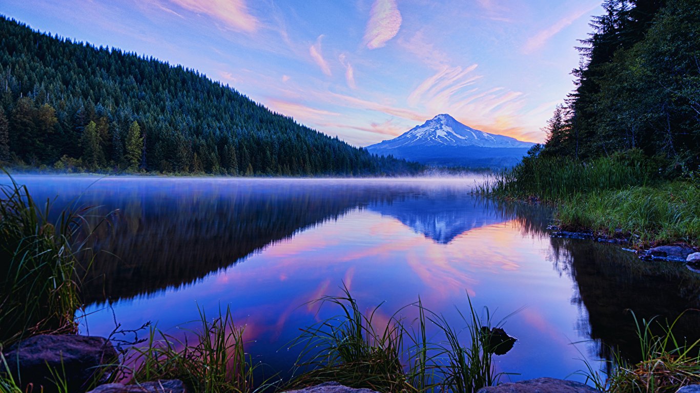 Wallpaper Usa Trillium Lake Oregon Nature Mountains Forests